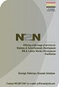 Download an N2N Pamphlet to Read or Print